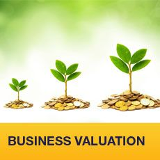 BusinessValuation